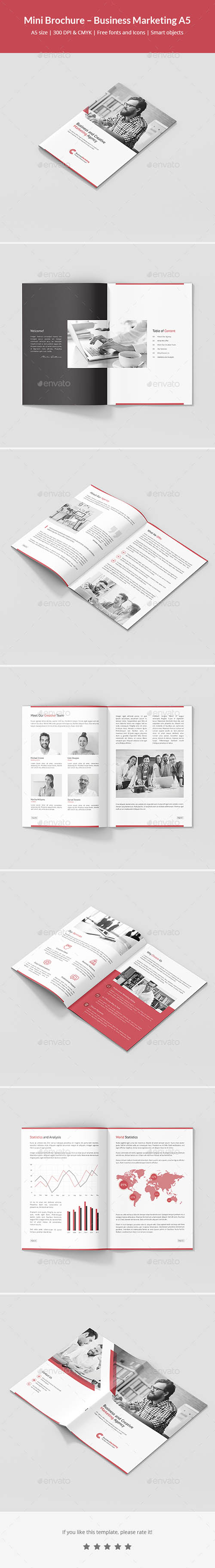 Mini Brochure – Business Marketing A5 21453913
