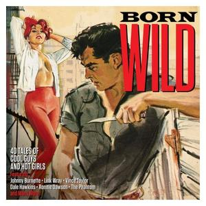 VA - Born Wild 40 Tales Of Cool Guys And Hot Girls (2CD, 2017)