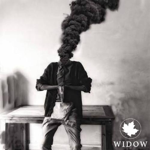 Sienna Skies - Widow (Single) (2018)