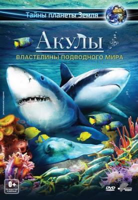 Акулы: Властелины подводного мира / Sharks: Kings of the Ocean (2013) BDRip 1080p