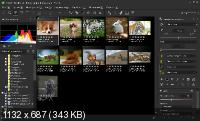 SILKYPIX JPEG Photography 8.2.29.1 (x64) Rus Portable