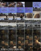 SMUT 1 / S.M.U.T. 1 (1997/WEBRip/SD)